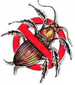 Bursa Böcek İlaçlama...